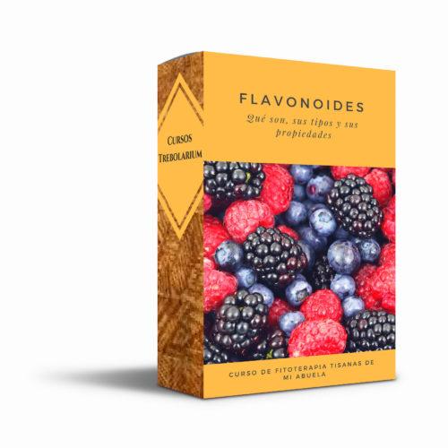 """Minicurso """"Flavonoides"""""""